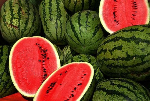 Watermelons / photo from http://en.wikipedia.org